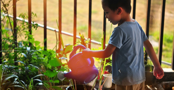 Gardening--Fun-filled-activities-for-the-summer-break