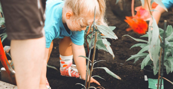 Environmental-awareness-activities-for-kids