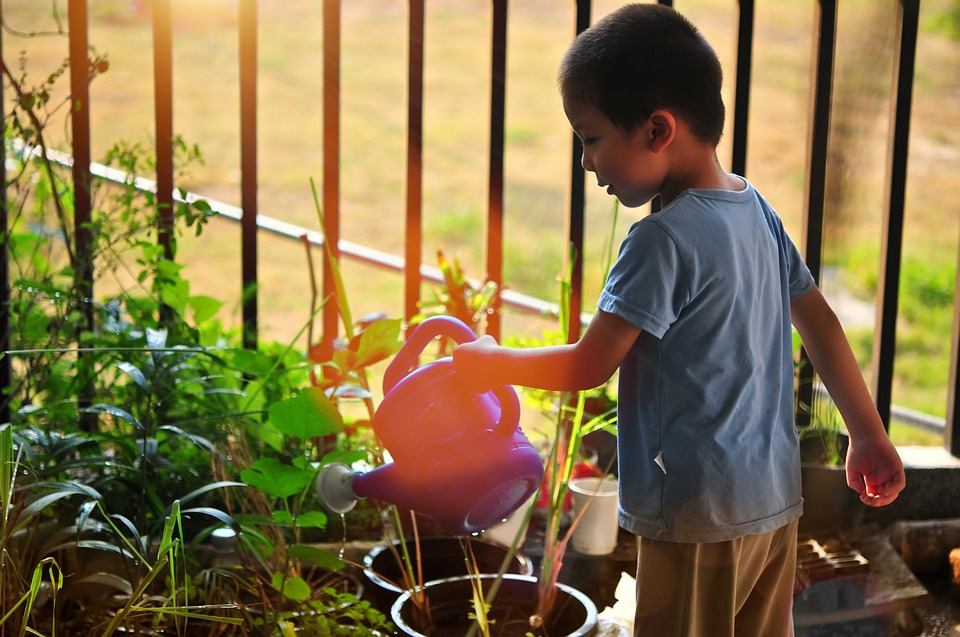 Gardening--Fun-filled-activities-for-the-summer-break